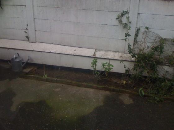 Trädgård1 001
