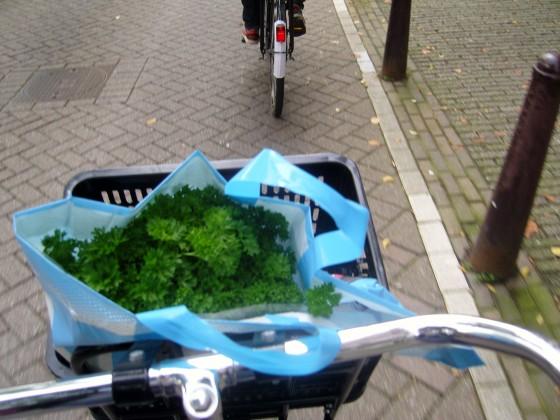 cykeltur 003
